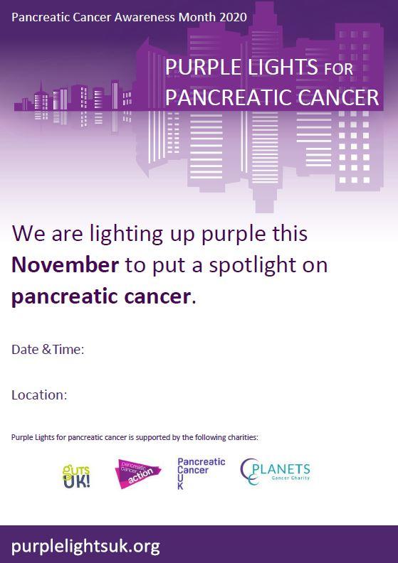 Purple Lights poster (landmarks)